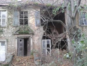 Die Natur eroberte sich weite Teile der Würdenburg zurück.