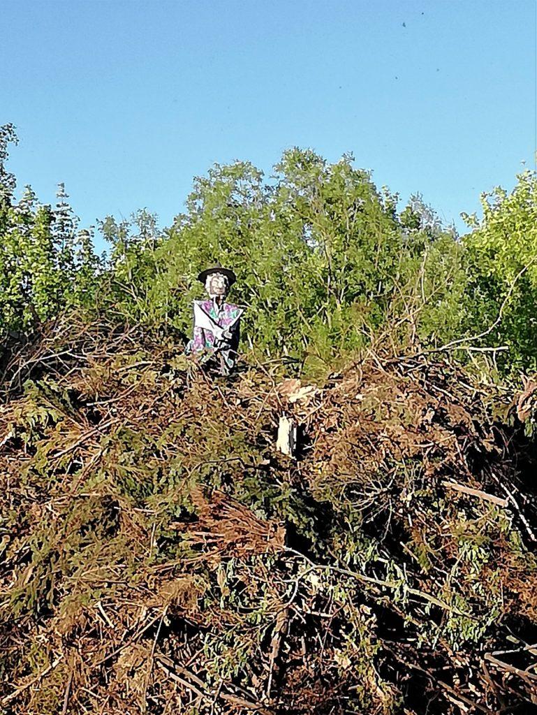 Haufen Abfallholz mit Hexenfigur für das Walpurgisfeuer