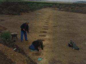 Abb. 3: Blick über die Grabungsfläche mit der nordwest-südost verlaufenden Grubenreihe. Foto: Landesamt für Denkmalpflege und Archäologie, Halle